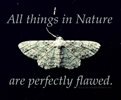 perfectly-flawed