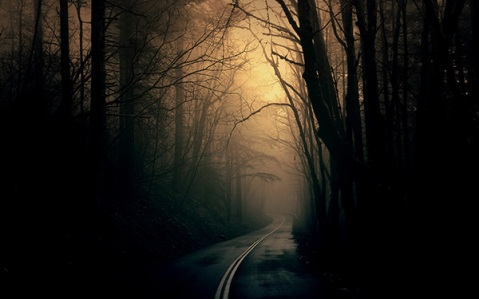 Dark-Forest-Road-background